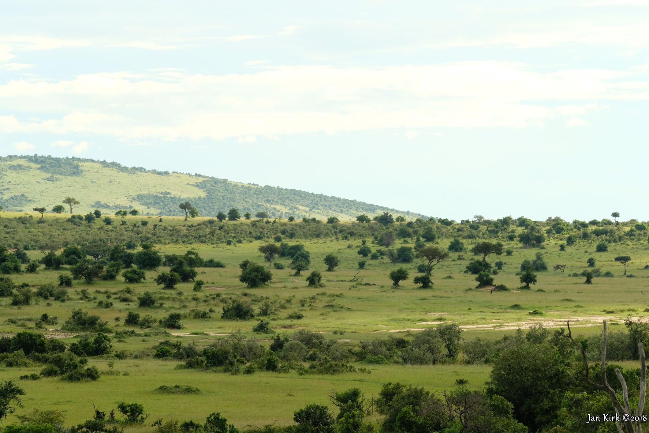 Landscapes of Masai Mara