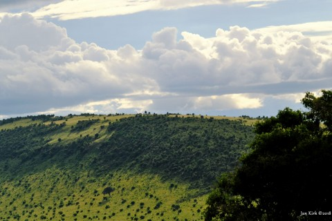 Landscapes of Masai Mara